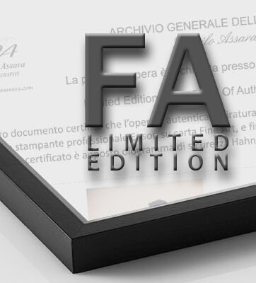 FA Limited Edition